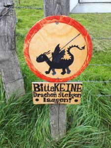 Wichtige Warnung am windigen Strand: Drachen können von Tieren für Fressfeinde gehalten werden und stören so den Lebensraum. Also Achtung!